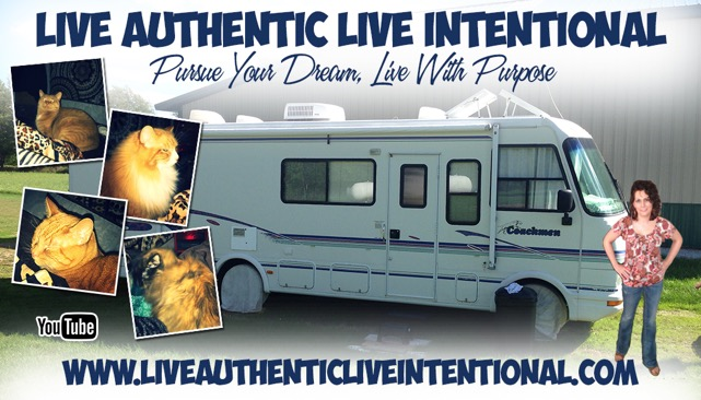 Live Authentic Live Intentional